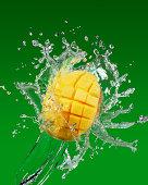 Mango splash