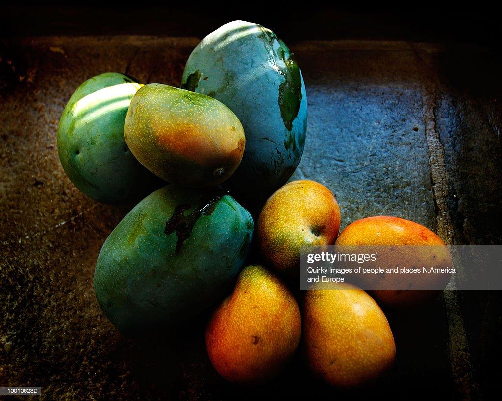 Mangoes : Stock Photo