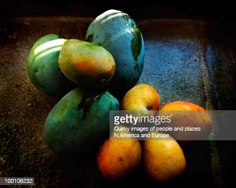Mangoes : Stock Photo