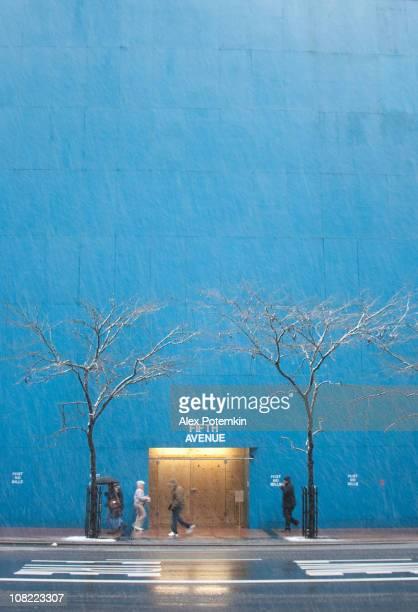 De Manhattan: Cinquième avenue, sous la neige