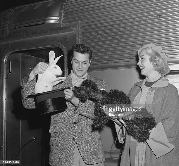 Manhattan New York New York Delighted at his master's magical artistry 'Houdini' pet poodle of husband and wife screen stars Tony Curtis and Janet...