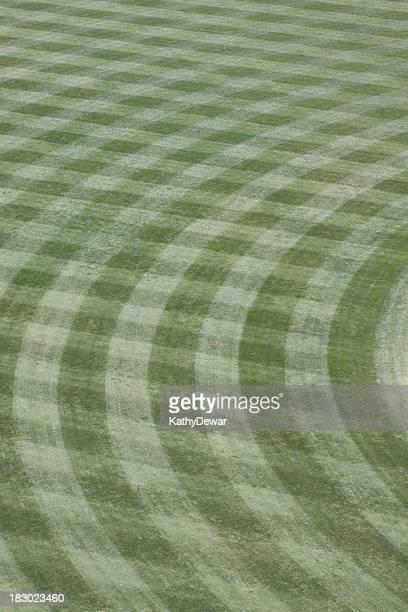 Manicured Baseball Field