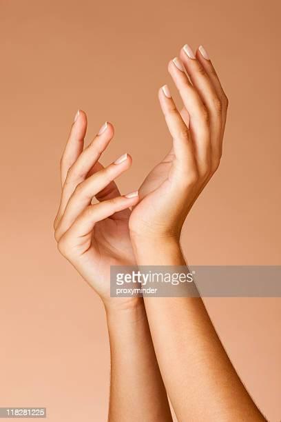 手入れの行き届いた美しい女性手の爪