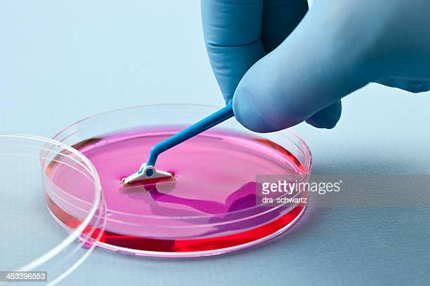 Manipulating cell culture