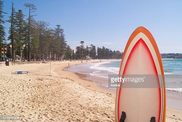 Manly Beach and Surfboard