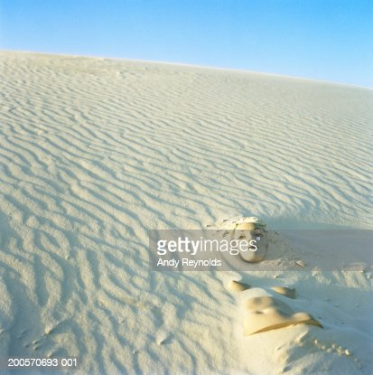 Mannequin head and torso partially buried in sand dune : Stock Photo