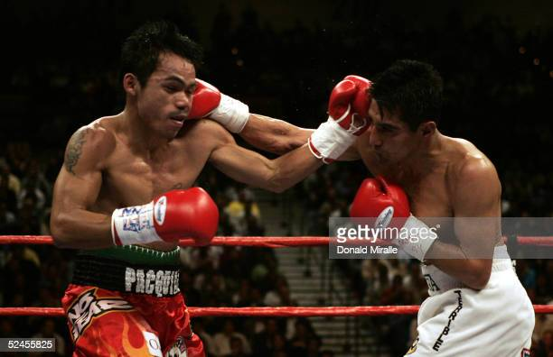 Manny Pacquiao of the Philippines hits Erik Morales of Mexico with a left jab as he is hit by a right during the World Super Featherweight...