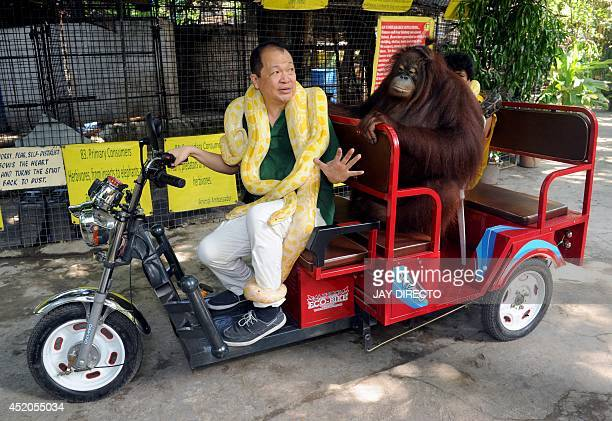 Manny Tangco owner of Manila's Malabon Zoo drives an electric vehicle with the resident zoo orangutan and an albino python to promote the...