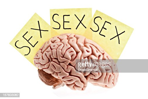 man's brain.