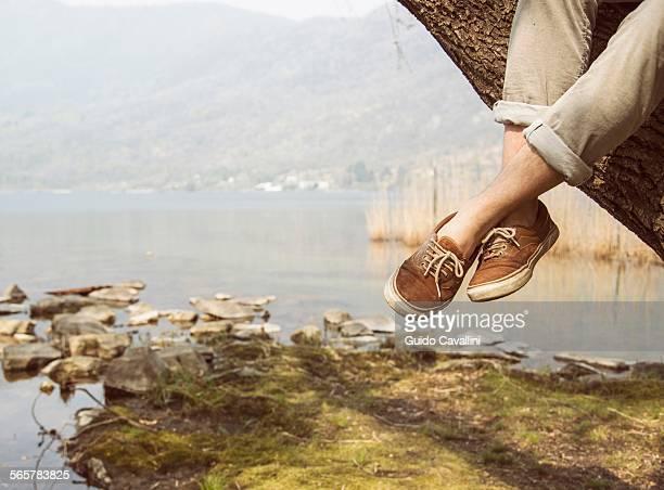 Mans feet dangling from tree on lakeside, Lake Mergozzo, Verbania, Piemonte, Italy