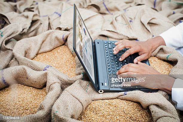 Man's hand working on a laptop on wheat sacks, Anaj Mandi, Sohna, Gurgaon, Haryana, India