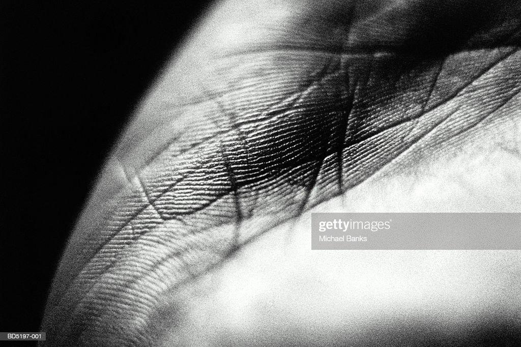 Man's open hand, close-up (B&W) : Stock Photo