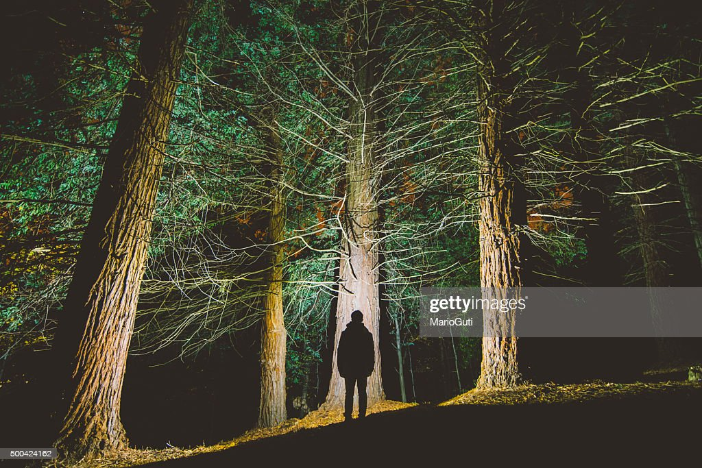 Man's silhouette at forest : Stock Photo