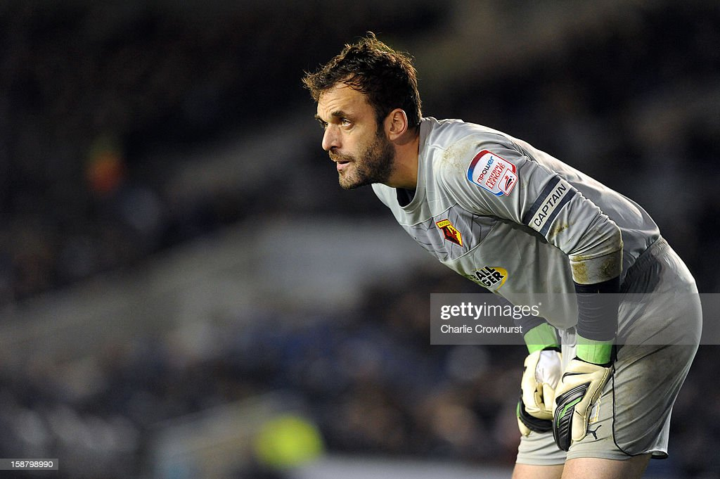 Manuel Almunia of Watford keeps an eye on the play during the npower Championship match between Brighton & Hove Albion and Watford at The Amex Stadium on December 29, 2012 in Brighton England.