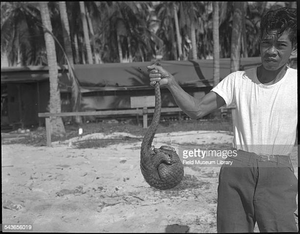 Manuel Celestino holding a Pangolin by its tail on Puerto Princesa in the Philippines December 1946 December 1946