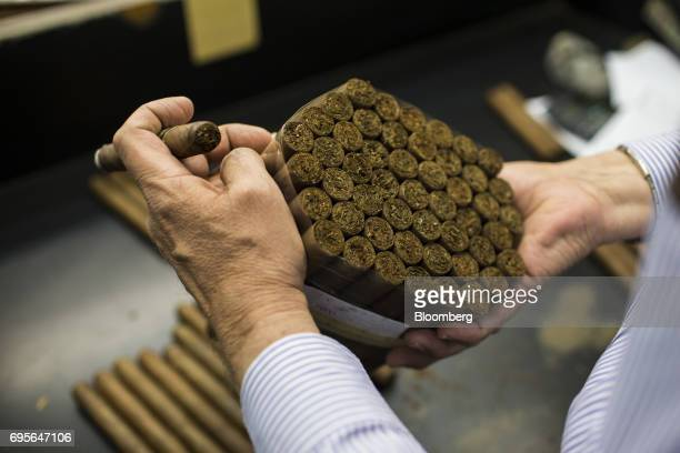 Manuel Quesada owner of Quesada Cigars inspects a bundle of cigars at the company's facility in Santiago de los Caballeros Dominican Republic on...