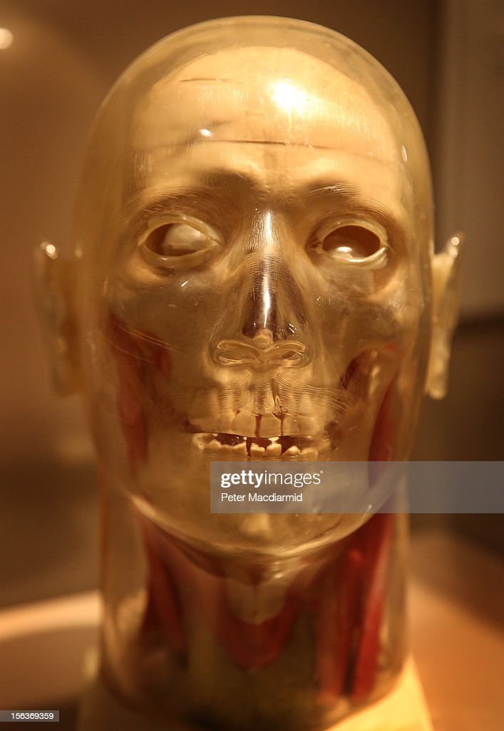 A manufactured plastic skull from 1950 is displayed at the Death: A Self-portrait exhibition at the Wellcome Collection on November 14, 2012 in London, England. The exhibition showcases 300 works from a unique collection by Richard Harris, a former antique print dealer from Chicago, devoted to the iconography of death. The display highlights art works, historical artifacts, anatomical illustrations and ephemera from around the world and opens on November 15, 2012 until February 24, 2013.