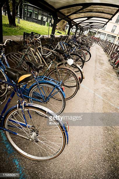 Many bicycles parked in city street, Italy