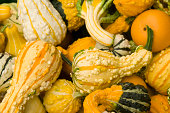 Many colourful decorative gourds