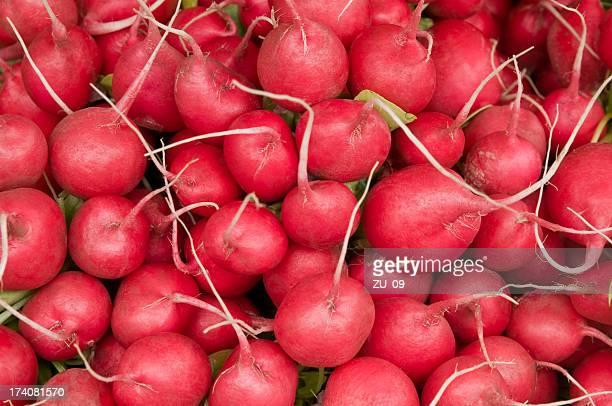 Nombreux radishes frais à un Étal de marché