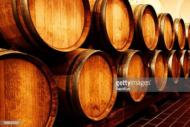 Many golden oaken barrels maturing wine in cellar