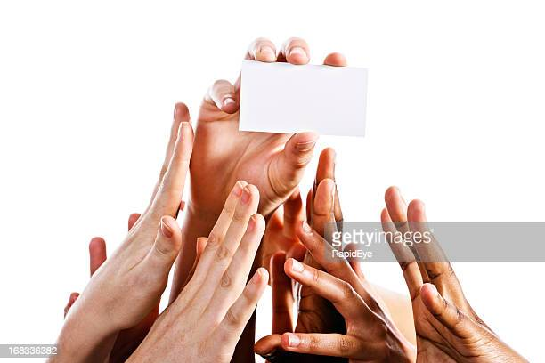 Many mixed hands compete for blank card, isolated on white