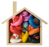 Many multi-colored rubber ducks squashed inside a conceptual wooden house shape frame, representing a house. Concept image relating to relationship, property, sharing, living together, togetherness, m