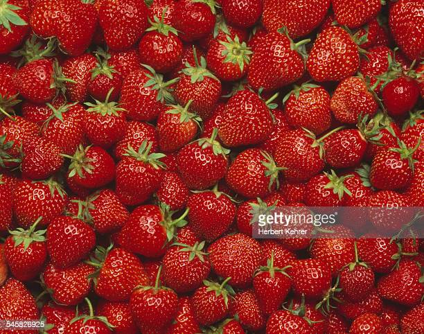 Many strawberries