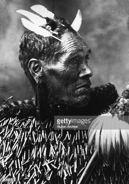Maori chieftain with tattooed chin and nose He also wears earrings and has feathers in his hair