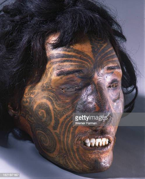 Maori sometimes preserved the heads of revered chiefs who died in battle far from home or those of important enemies European traders in the...