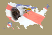 a map of eeuu with a flag background and an bald eagle