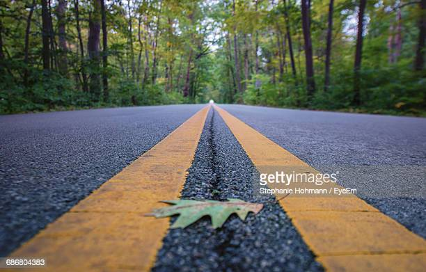 Maple Leaf On Empty Road Amidst Trees