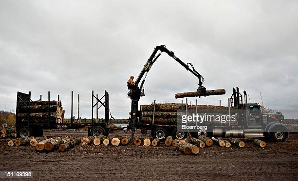 Maple logs are unloaded outside the Nicolet Hardwoods Corp lumber mill in Laona Wisconsin US on Wednesday Oct 10 2012 Nicolet Hardwoods Corp supplies...