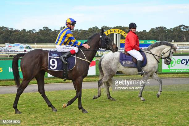 Mapping ridden by Brandon Stockdale returns to the mounting yard after winning the Catanach's Jewellers BM58 Handicap at Bendigo Racecourse on August...