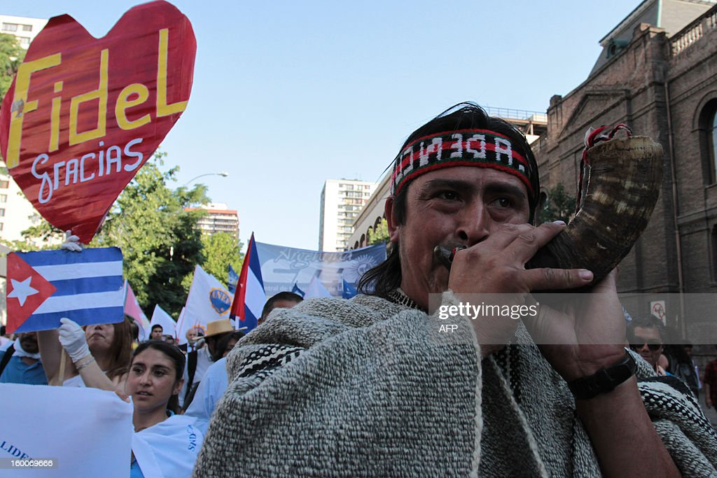 A Mapuche native participates in a march of the Peoples' Summit 'for Social Justice, International Solidarity and in Defence of the Commons', held in the sidelines of the weekend's CELAC-EU Summit, in downtown Santiago on January 25, 2013. More than 40 Heads of State and Government of the Community of Latin American and Caribbean States (CELAC) and the European Union (EU) will meet on January 26 and 27 to promote a strategic partnership between the two regions.