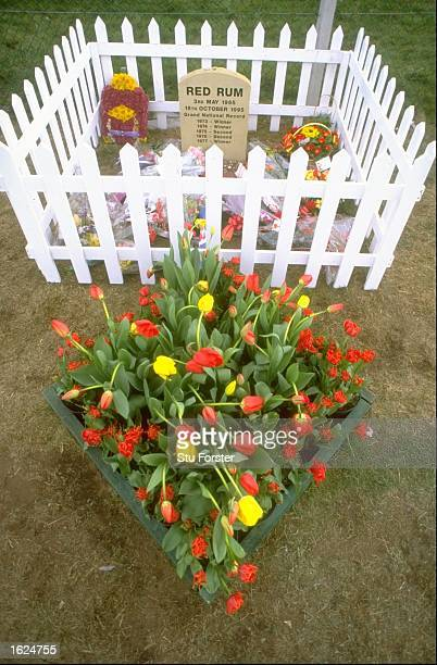 Red Rum's grave taken during the Grand National meet at Aintree racecourse in Liverpool England Mandatory Credit Stu Forster/Allsport