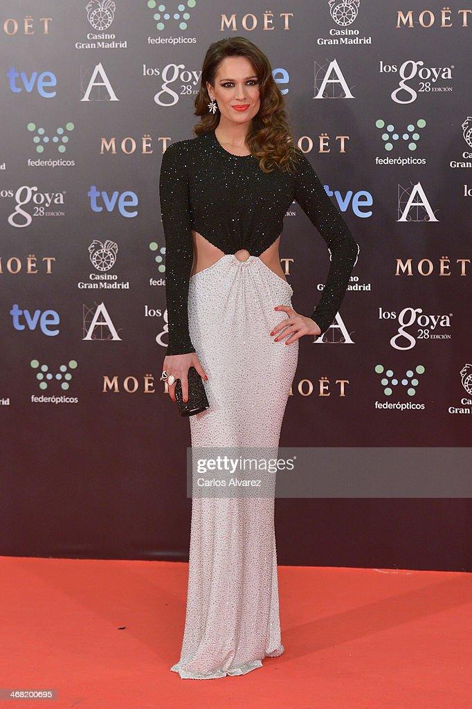 Mar Saura attends Goya Cinema Awards 2014 at Centro de Congresos Principe Felipe on February 9, 2014 in Madrid, Spain.