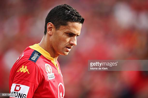 Marcelo Carrusca of Adelaide United looks on during the round 15 ALeague match between Adelaide United and the Central Coast Mariners at Coopers...