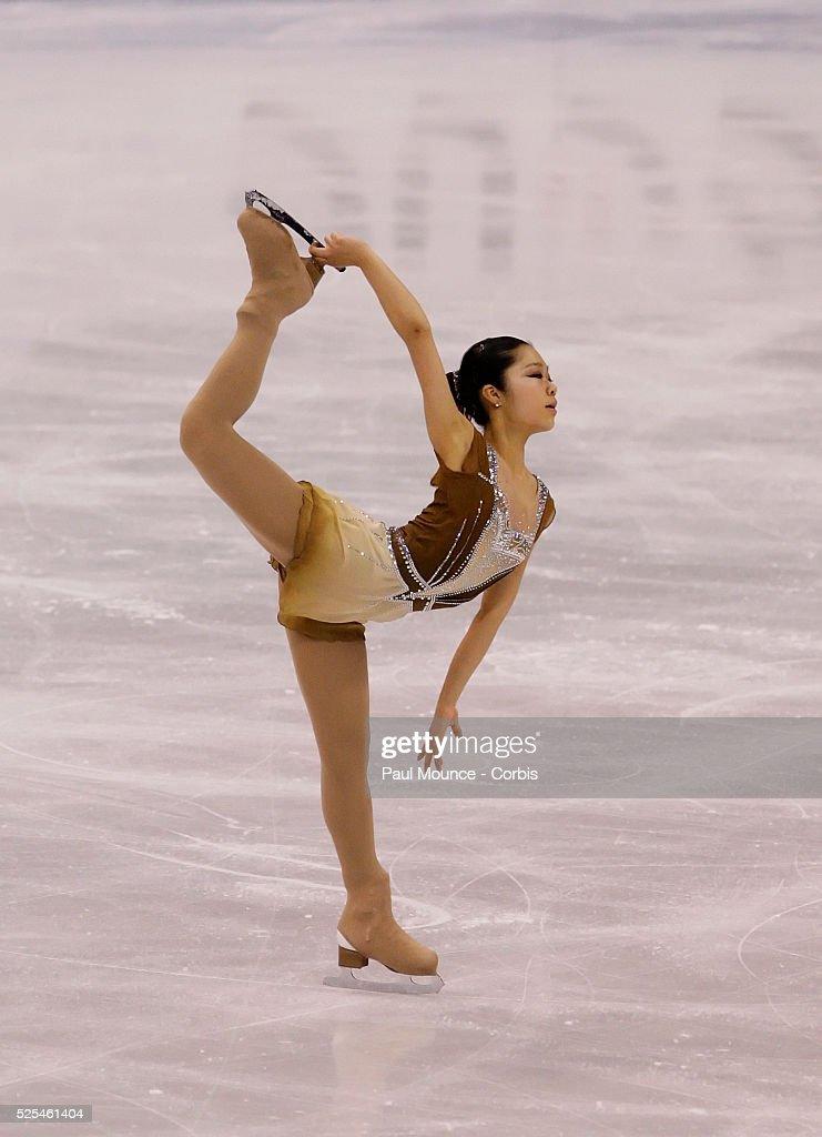 2009 adult figure skating nationals