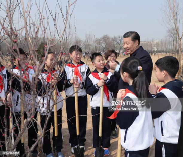 BEIJING March 29 2017 Chinese President Xi Jinping talks with students as he attends a tree planting activity in Beijing capital of China March 29...