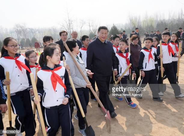 BEIJING March 29 2017 Chinese President Xi Jinping walks with students as he attends a tree planting activity in Beijing capital of China March 29...