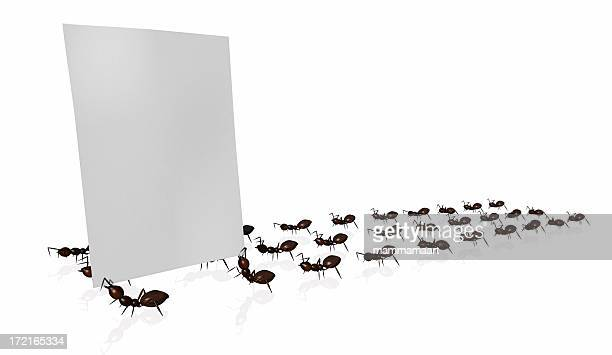Marching ants holding up a blank, white page of paper