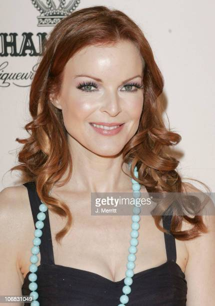 Marcia Cross during 5th Annual Project ALS Benefit Gala Honoring Ben Stiller Hosted by Chambord Cocktail Room at The Westin Century Plaza Hotel in...