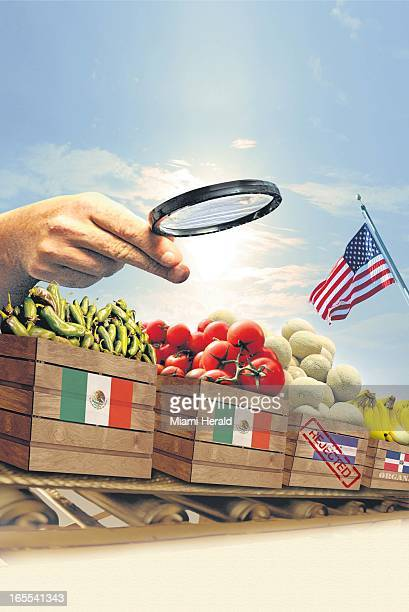 Marco Ruiz color illustration of large hand holding magnifying glass to examine International rail cars filled with fresh produce