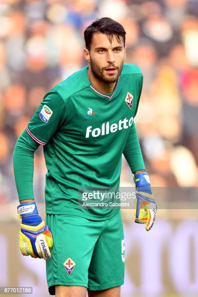 Marco Sportiello of ACF Fiorentina looks on during the Serie A match between Spal and ACF Fiorentina at Stadio Paolo Mazza on November 19 2017 in...