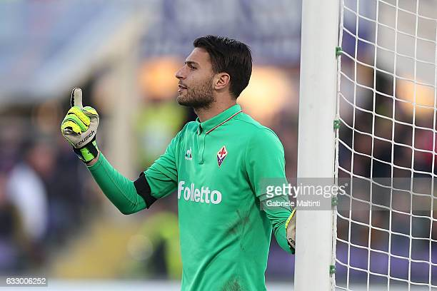 Marco Sportiello of ACF Fiorentina reacts during the Serie A match between ACF Fiorentina and Genoa CFC at Stadio Artemio Franchi on January 29 2017...