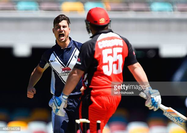 Marcus Stoinis of the Bushrangers celebrates after taking the wicket of Mark Cosgrove of the Redbacks during the Matador BBQs One Day Cup match...