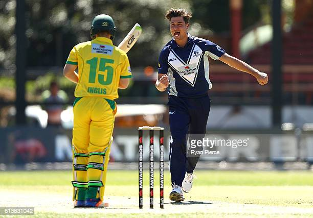 Marcus Stoinis of the Bushrangers celebrates after taking the wicket of Josh Inglis of CA XI during the Matador BBQs One Day Cup match between...