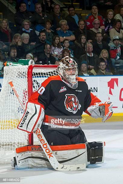 Marek Langhamer of Medicine Hat Tigers defends the net against the Kelowna Rockets on January 10 2015 at Prospera Place in Kelowna British Columbia...