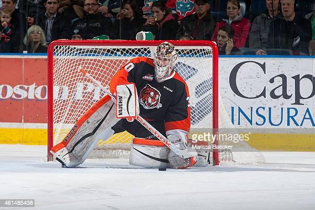 Marek Langhamer of Medicine Hat Tigers makes a save against the Kelowna Rockets on January 10 2015 at Prospera Place in Kelowna British Columbia...